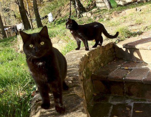 Nerone and his sister