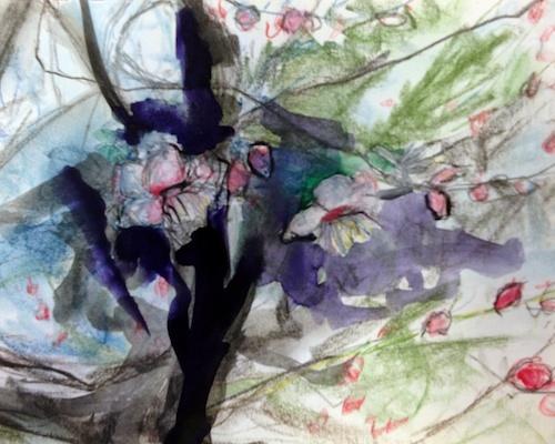 plum blossom study