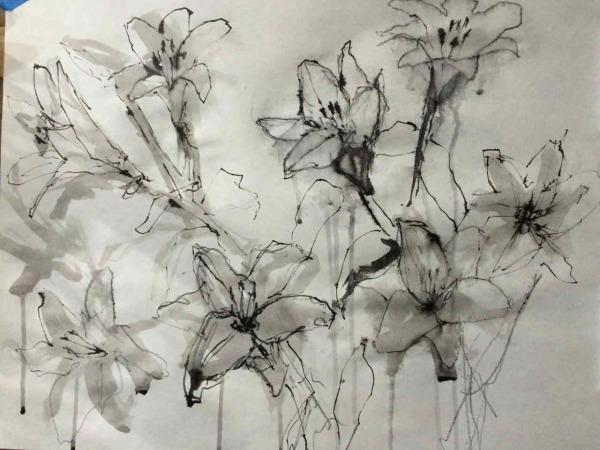 lilies - 1